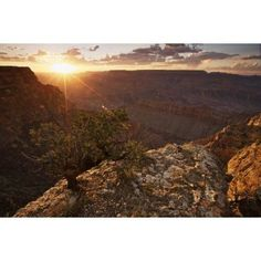 Grand Canyon west of Lipan Point Arizona Canvas Art - Terry MooreStocktrek Images (35 x 23)