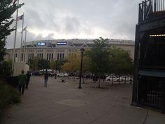 Yanky stadium