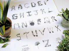 Sasha Prood's botanical typography illustration, alphabet