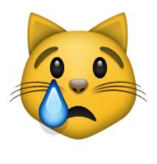 pleurer visage de chat