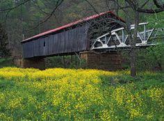 Otway Covered Bridge, Scioto County, Ohio