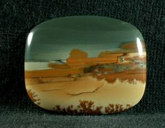 Owyhee Picture Jasper No kidding picture!  This is awesome!