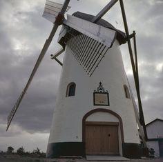 De witte molen in / van Meeuwen langs de provinciale weg Hank - Wijk en Aalburg.