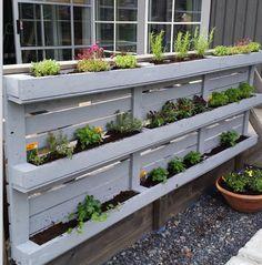 Kitchen garden Diy Fence, Pallets Garden, Garden Planning, Canning, Plants, Gardens, Gardening, Vertical Gardens, Vegetable Garden
