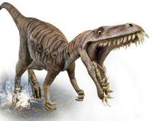 What Dinosaur Predator Are You? http://ift.tt/292gd6b  #Animals