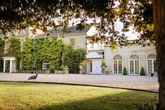 Northbrook Park is a beautiful wedding venue in Surrey. Browse our gallery of images to get inspired for your special day Beautiful Wedding Venues, Best Wedding Venues, Perfect Wedding, Dream Wedding, Wedding Stuff, Northbrook Park, Wedding Venues Surrey, February Wedding, Park Weddings