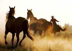 Wyoming, the Cowboy State http://video.google.com/videoplay?docid=-6580008965521100547&ei=6ndXS8LnOoW6qgKU1KzICA&q=beautiful+wyoming&hl=en#docid=635936587791108713