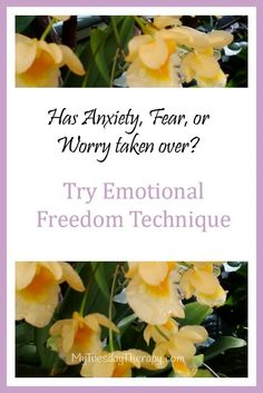 Emotional Freedom Technique (EFT) is used for many things including insomnia and stress. Adrenal Fatigue and EFT. Adrenal Fatigue Treatment, Adrenal Fatigue Symptoms, Adrenal Glands, Insomnia Help, Insomnia Causes, Signs Of Postpartum Depression, Attention Disorder, Coping With Depression, Mental Health Problems