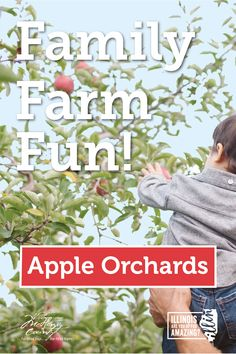 Start growing your family traditions. McHenry County is home to the most vibrant agritourism culture in the state. You'll never have to look far to find farmland fun! Organic Horticulture, Organic Gardening, Gardening Tips, Legit Online Jobs, Strange Flowers, Farm Fun, Homestead Gardens, Christmas House Lights, Apple Orchard