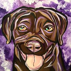 Meet Monroe the chocolate lab! #dogs #thesoo #colourfulcanines