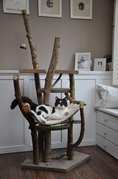 Unieke krabpalen voor katten #3