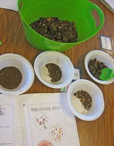 Rocks, soil and all kinds of fun learning activities