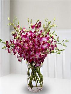 A purple orchid bouquet in a glass vase - dendrobium orchids