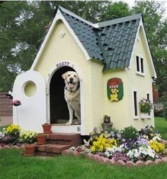 This is THE coolest dog house I have ever seen!