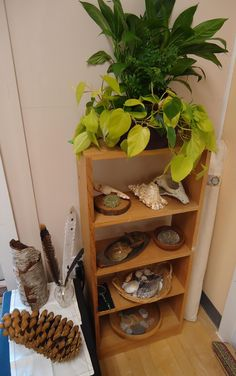 nature shelf  [To the Lesson! Offerings from the world of a Montessori mom and teacher.]. #ECMontessori