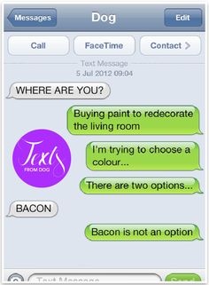 Text from Dog - Funny texts from dog   Pretty Fluffy