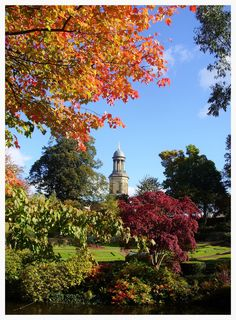Quarry Park Shrewsbury - pisces1946 - Looking from Quarry Park with St Chads in the background. -  http://ift.tt/2dmSfDY IFtemppicpinned in Building blocksdownld in ios #October 19 2016 at 05:37PM#via IF