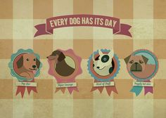 Every Dog Has It's Day!