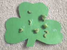easy shamrock paper craft with colored macaroni (recipe included)