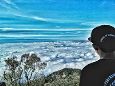 Puncak gunung Cikuray MDPL 2821