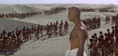 Scena bitwy- Faraon Sumo, Wrestling, Sports, Lucha Libre, Hs Sports, Sport, Exercise