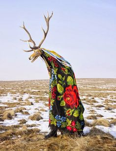 """Cerbul, from the """"Wilder Mann"""" series Charles Freger (2010-2011) -photograph by Charles Fréger of a traditional costume-dance  that has been preserved in Romania: at Christmas,  you can see bands of costumed folk-musicians performing this dance even In Bucharest and other Romanian cities and especially in the villages. It's very surreal and beautiful. http://www.slate.com/blogs/behold/2013/04/12/charles_fr_ger_wilder_mann_examines_pagan_rituals_throughout_europe_photos.html"""