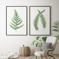 Museum quality prints of my original watercolour motif of 2 fern leaves. Choose from a range of art papers or canvas. Plant Art, Boho Interior, Living Room Decor, Bedroom Decor, Interior Decorating, Home Decor Decals, Interior, Leaf Prints, Interior Walls