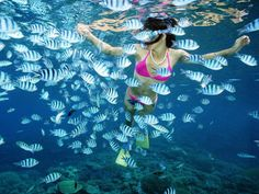Snorkeling is one of the many fabulous excursions couples may offer their guests in Puerto Vallarta.