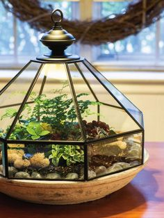 These thrift store DIY garden projects are just the thing for a rainy Saturday (or a sunny Monday!) to help you decorate your outdoor space. Terrarium Diy, How To Make Terrariums, Glass Terrarium, Terrarium Decorations, Terrarium Containers, Glass Light Fixtures, Glass Light Shades, Ideas Florero, Thrifty Decor
