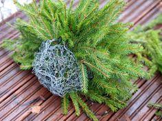 Havupallo - Kohti Joulua -joulublogi Christmas Diy, Christmas Decorations, Xmas, Nature Crafts, Planters, Art Floral, Advent, Craft Ideas, Bricolage