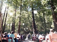 Get married in the redwoods: Deer Park Villa, a beautiful Marin wedding venue. Find info, prices, photos and detailed info on Bay Area wedding locations. Fairfax California, Deer Park Villa, Wedding Film, Wedding Lace, Wedding Vintage, Rustic Wedding, Wedding Reception, Redwood Wedding, Wedding To Do List