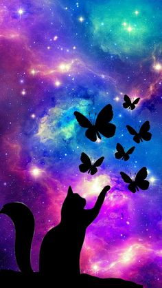 Cat Galaxy With Butterfly's🐈
