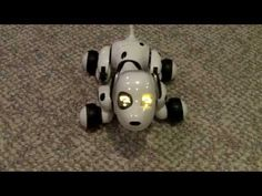▶ Zoomer The Interactive Robotic Pet. Hands-On Review of The Zoomer Dog From Spin Master - YouTube