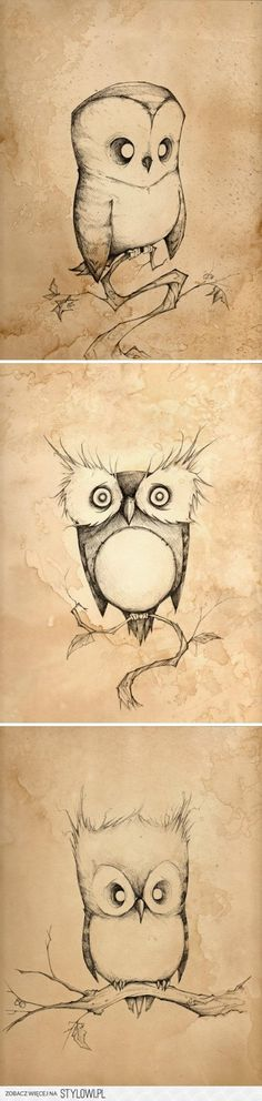one of thes might just be the inspiration to my next tattoo. will have two at the same time after I give birth, one will be on my nape, and one to (an owl) to cover the old tattoo I have on my lower back :) owl drawing Illustrations, Illustration Art, Painting & Drawing, Drawing Owls, Arte Sketchbook, Owl Art, Cute Owl, Amazing Art, Awesome