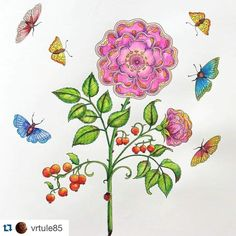 """#Repost @vrtule85 with @repostapp. ・・・ #secretgarden #jardimsecreto #colourinforadults #johannabasford #watercolorpencils #coloriage #colorindo"""