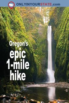 Travel | Oregon | Attractions | Adventure | Exploring | Site Seeing | Unique Finds | Local | Hiking | Easy Hikes | Best Trails | Waterfall