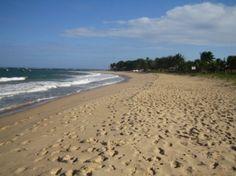 Terreno 600M2 Beira-Mar - Excelente terreno beira-mar para residência de luxo ou construção de village em Itacimirim 6000m2 com 40 metros de beira-mar em uma...