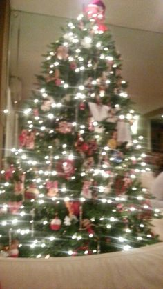 Joyeux Noe,l Feliz Navidad, Merry Christmas Love Posh Paw Prints On The Park for the Paw~ticular Patron®©™