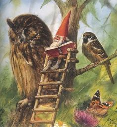 "David the Gnome, Owl and Bird _ David Gnomo, Gufo e Passerotto - Illust: Rien Poortvliet , from the book ""Gnome Life"" - August Norman Rockwell, Rockwell Kent, Woodland Creatures, Magical Creatures, David The Gnome, Kobold, Elves And Fairies, Dutch Artists, Fairy Art"