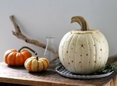 Willow Rose: Prettiest of Pumpkins