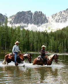 Need to do this to have peace for horse and rider. Just go out. Play. Relax. Explore.