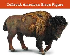 CollectA American Bison Figure. CollectA is known as one of the leading manufacturers worldwide of the finest scaled replicas collections. These products are of the highest quality in both sculpture and painting. They design their replicas to provide both, knowledge and entertainment to children and parents of all age groups. Today CollectA miniature replicas collectibles are being used in role play for educational purpose, awareness of endangered species, consciousness of environmental...
