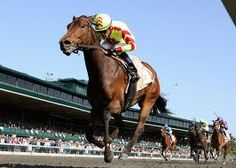 Thoroughbred Racing at one of the most beautiful tracks in the country! Keenland