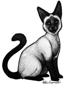 Custom Full Body Pet portrait  Freehand Graphite by HammoudaArts (Art & Collectibles, Drawing & Illustration, pet, portrait, drawing, animal, hand drawn, graphite, pencil, custom portrait, pencil drawing, original art, dog, cat, pet portrait)