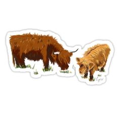 After a trip to Scotland recently, I couldn't resist painting these gorgeous highland cows I came across. They kindly stood in the middle of the road while I took their photo. They're incredible animals. • Also buy this artwork on stickers, apparel, home decor, and more.