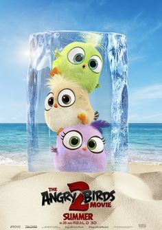 Watch- The Angry Birds Movie 2 & Movie ( The Angry Birds Movie aka Angry Birds 2 - Angry Birds 2 - Der Film - 앵그리버드 더 무비 2 - Angry Birds 2 Movie, Cumpleaños Angry Birds, The Birds Movie, Bird Wallpaper, Disney Wallpaper, Cartoon Wallpaper, Movie Wallpapers, Cute Wallpapers, Angry Wallpapers