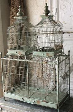 chippy green cage from France, love these antique double dome birdcages. Das Haus In Montevideo, Antique Bird Cages, Vintage Birds, Vintage Clocks, Vintage Stuff, French Decor, Home Decor Accessories, Cheap Home Decor, Cottage Style