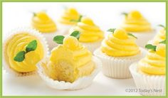 lemon cupcakes with limoncello buttercream
