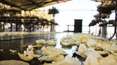 Ceremony Decorations, Flower Decorations, Table Decorations, Red Wedding, Wedding Flowers, Large Floral Arrangements, White Weddings, Magical Wedding, Rose Petals