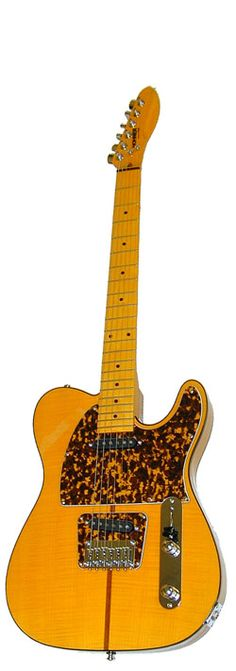 The Hohner Artist Elite GE4000 is a wierd one. Originally a budget Telecaster homage until a certain Mr Prince adopted it in the 80s. Has since become really collectible and over priced.